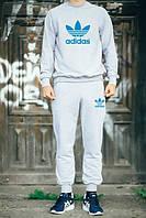 Спортивный костюм Adidas, адидас, серый, хлопок, реглан, синее лого, К21