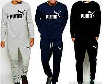 Спортивный костюм Puma, пума, реглан, в ассортименте, хлопковый, повседневный, молодежный, К250