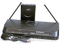 Радиосистема Soundking EW001 SL