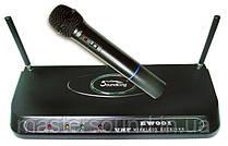 Радиосистема Soundking EW001 H