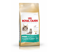 Корм Royal Canin (Роял Канин) MAINE COON Kitten для котят для котят мейн-куна  0.4 кг
