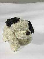 Собака 42x32