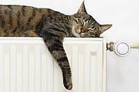 Установка, замена радиаторов отопления. Монтаж систем отопления. Замена стояков отопления