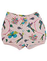 Шортики для девочки: цвет -Персиковый,размер-74 см,9 мес
