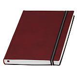 Недатований щоденник А5 Дакар Преміум Еластик, фото 4