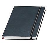 Недатований щоденник А5 Дакар Преміум Еластик, фото 5