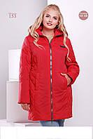 Женское демисезонное пальто ( разные цвета)