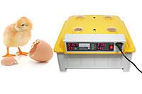 Инкубатор автоматический JANOEL 8-48 на 48 яиц. Электронный термоконтроль., фото 1