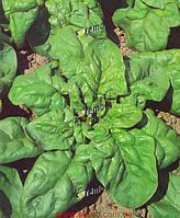 Насіння шпинату Матадор 4 кг Semo