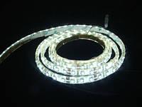 Светодиодная лента 5м White 300 диодов