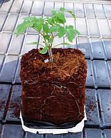 Кокосовый грунт для рассады и цветов 5 кг