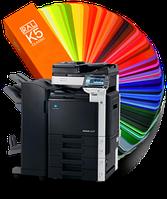 Распечатка, цветная цифровая печать, ксерокопирование.