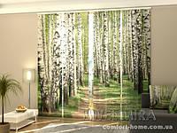 Панельная штора Березовый лес комплект 4 шт
