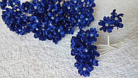 Цветы яблони (10 веточек) синие