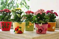 Идеи декора: оригинальные вязанные кашпо для цветов своми руками.