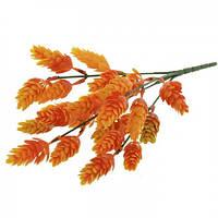Хмель Оранжевый 33 см , фото 1