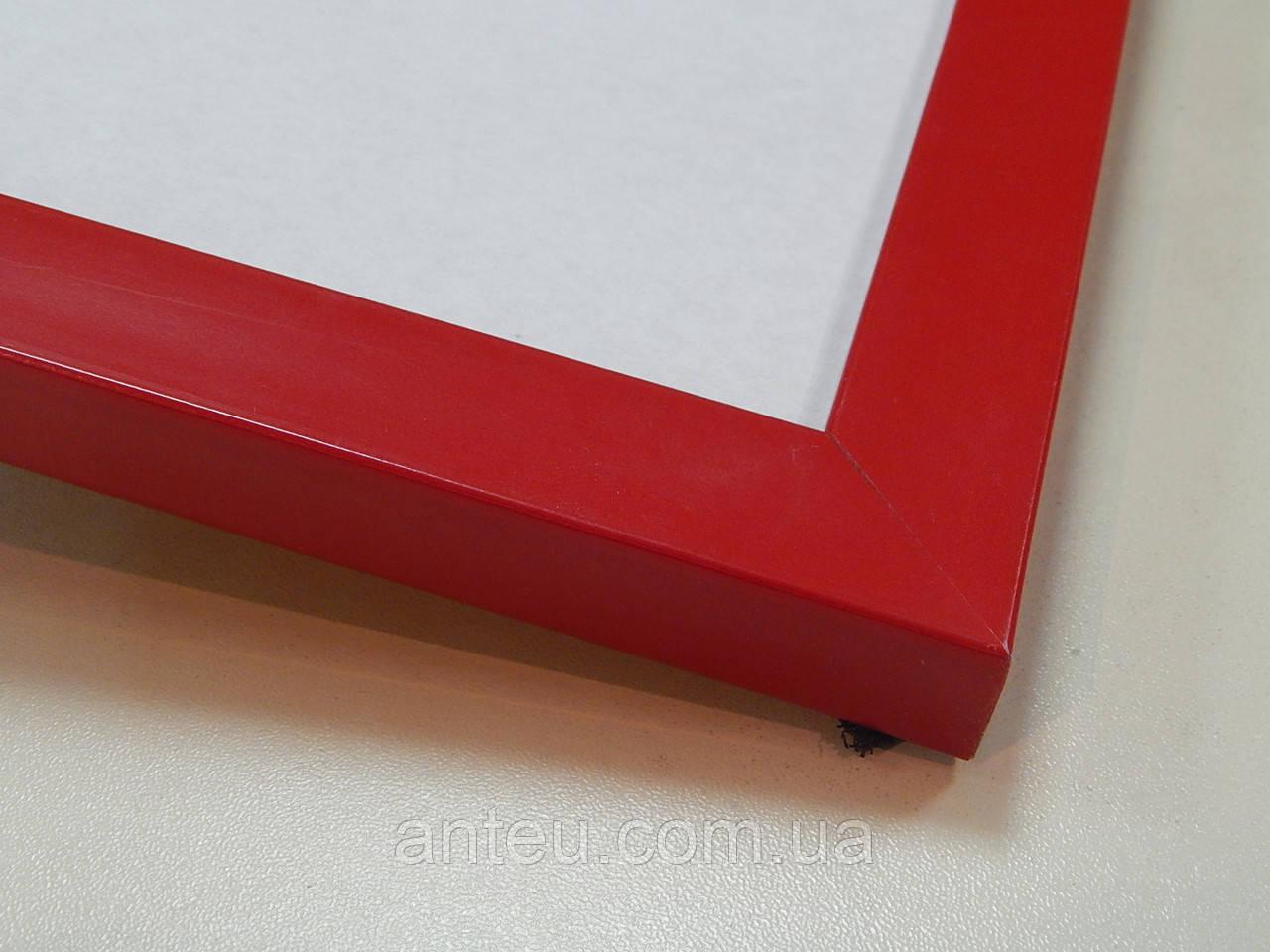 Рамка А3 (297х420).Красный матовый.22 мм.Пластик.