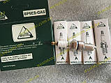 Свечи Balaton газовые ваз 2101 2103 2104 2105 2106 2107 2108 2109 21099 2113 2114 2115 таврия Lanos Sens, фото 3