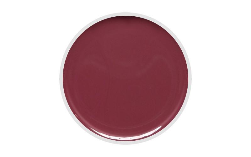 Цветной гель DIS 5 гр. 061