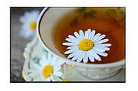 Картина на холсте Чай с ромашкой (20х30)