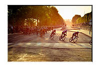 Картина на холсте Велосипедисты (50х75)