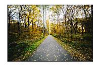Картина на холсте Осень (40х60)