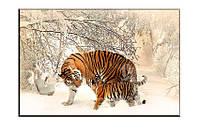 Картина на холсте Зимняя прогулка (30х45)