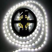 Светодиодные (LED) ленты на диодах SMD 2835/3528 12V Econom