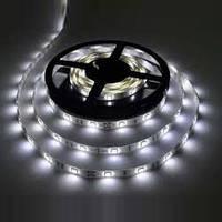 Светодиодная лента SMD 5050 30 LED/m IP20, Белая