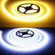 Светодиодные (LED) ленты на диодах SMD 5630 и SMD 3014 12V Standart Яркие