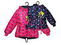 Куртка осенняя на флисовой подкадке девочке. P-93, фото 1