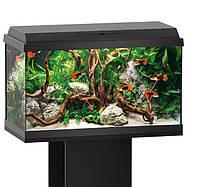 Аквариум Juwel Primo 60 LED черный 63 литра