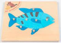 Пазл Рыбка, Мир деревянных игрушек Р 89 (Р 89)