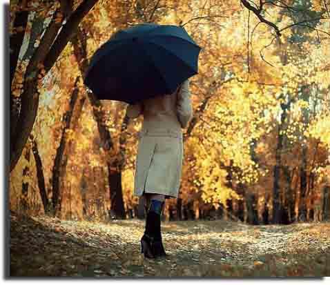 Женская обувь на осень в каталоге Boots.od.ua