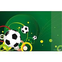 Подкладка для письма Panta Plast Футбол 665x430мм (0318-0035-95)