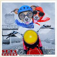 "Репродукция ""Собаки на мотоцикле"" 30х30 см на холсте"