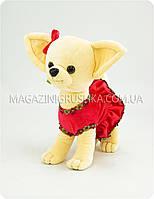 Мягкая игрушка «Собачка в платьице» Чичилав dog08