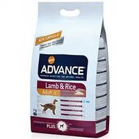 Едванс для собак Ягня і рис 3 кг