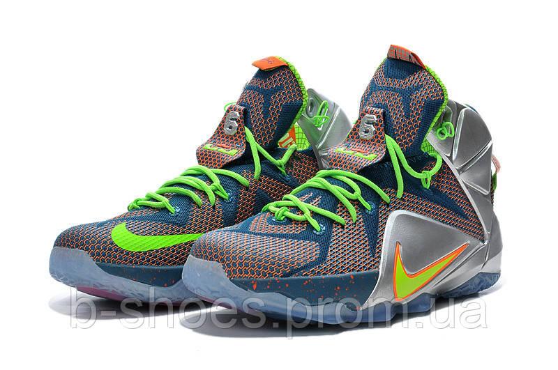 e02572dc2a30 Мужские баскетбольные кроссовки Nike Lebron 12 (Trillion Dollar Man ...