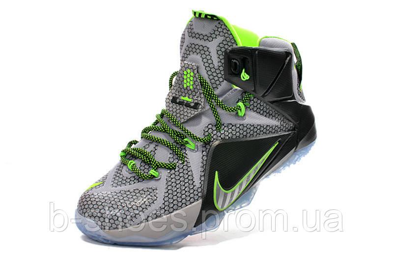 Мужские баскетбольные кроссовки Nike Lebron 12 (Dunk Force)
