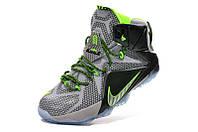 Мужские баскетбольные кроссовки Nike Lebron 12 (Dunk Force), фото 1