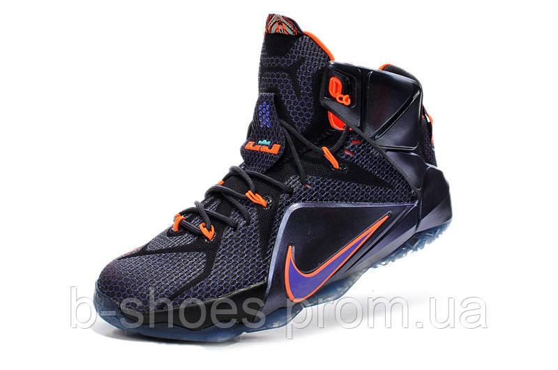 6ac3faccf00f Мужские баскетбольные кроссовки Nike Lebron 12 (Instinct) купить в ...