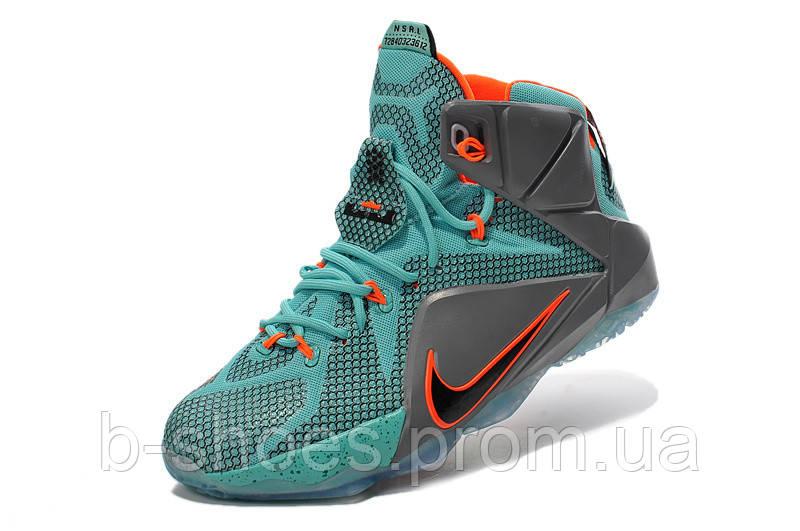 Мужские баскетбольные кроссовки Nike Lebron 12 (NSRL)