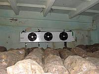 Холодильное оборудование. Овощехранилеща. Под ключ.