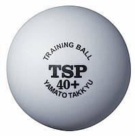Пластиковые мячи для настольного тенниса TSP Training ball