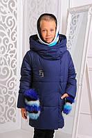 Зимняя удлиненная куртка «Феличе» 128-152 рр синяя вязаный хомут в комплекте