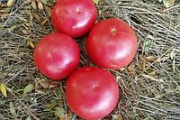Семена томата Пинк Уникум (розовый помидор) F1 Seminis 1000 семян