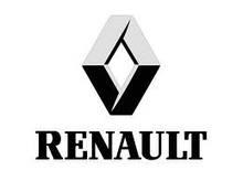 Бічні пороги Renault