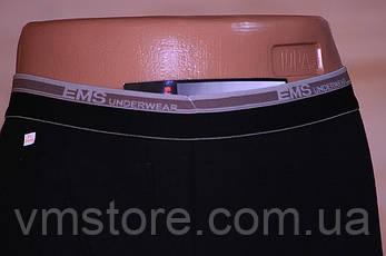 Мужские кальсоны EMS термо большие размеры, EMS, кальсоны оптом, фото 2