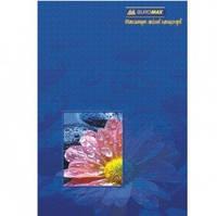 Книга учета А4, 96л линия ЛАМИНАТ